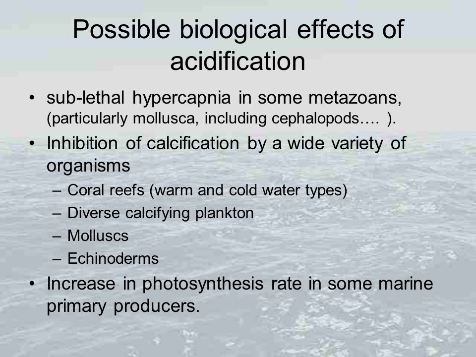 Possible biological effects of acidification