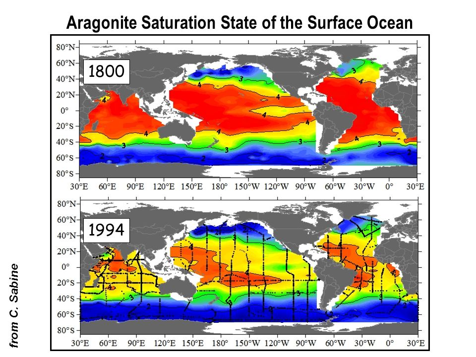 Aragonite Saturation State of the Surface Ocean