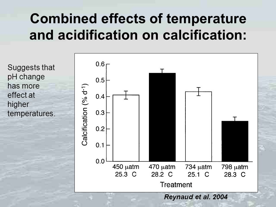 Combined effects of temperature and acidification on calcification: