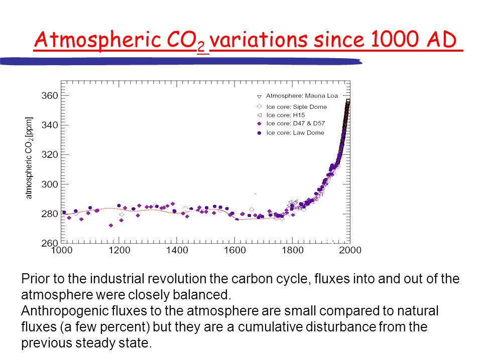 Atmospheric CO2 variations since 1000 AD