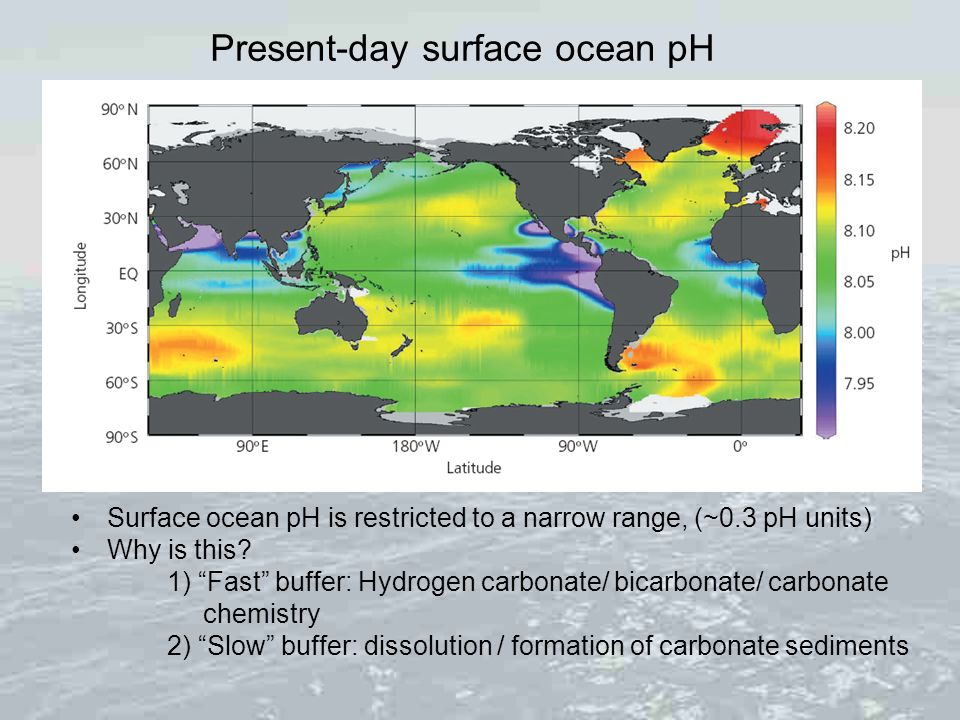Present-day surface ocean pH