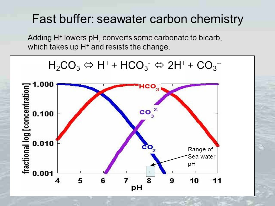 Fast buffer: seawater carbon chemistry