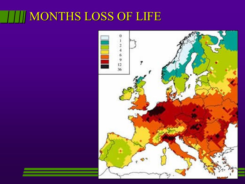 MONTHS LOSS OF LIFE