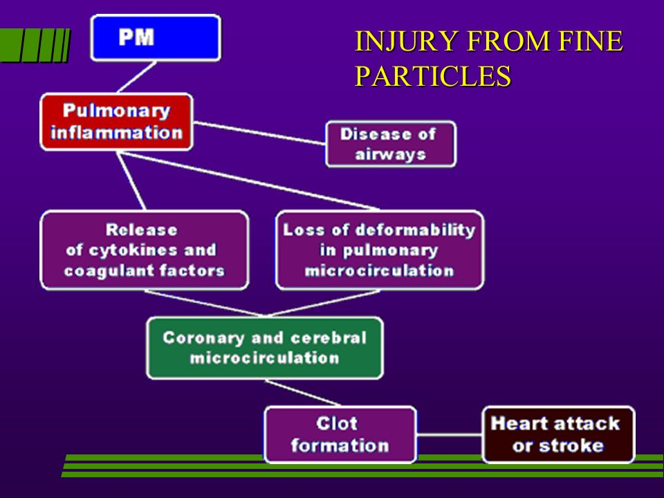 INJURY FROM FINE PARTICLES
