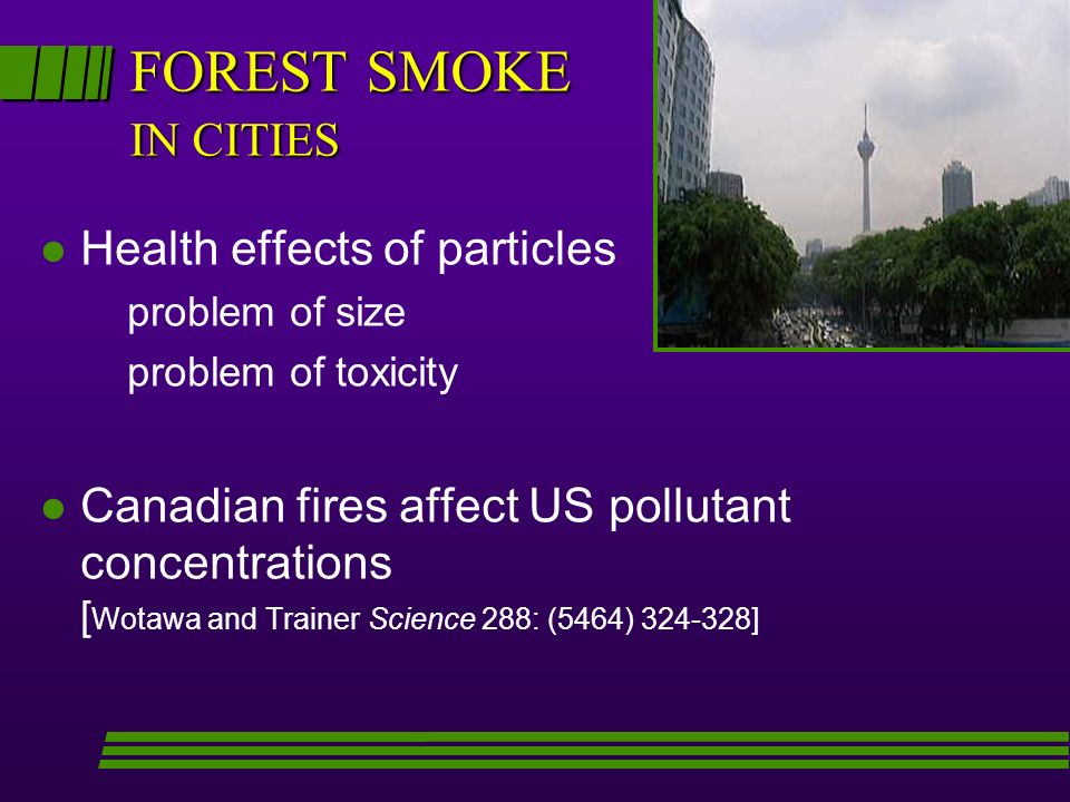 FOREST SMOKE IN CITIES Health effects of particles