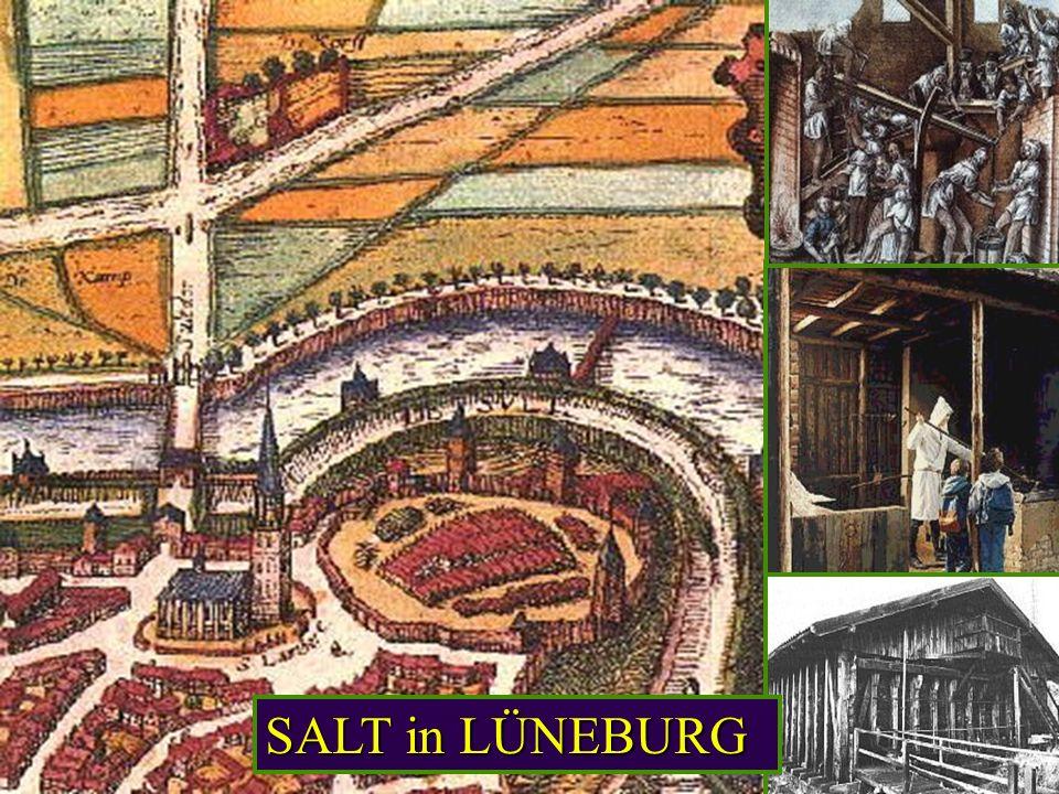SALT in LÜNEBURG