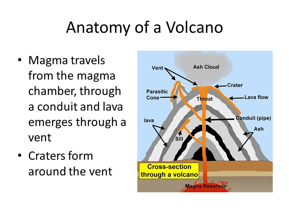 Funky Anatomy Of A Volcano Collection And. Excelente Anatomy Of Volcanoes Ornamento Anatom A De Las. Worksheet. Anatomy Of A Volcano Worksheet At Clickcart.co