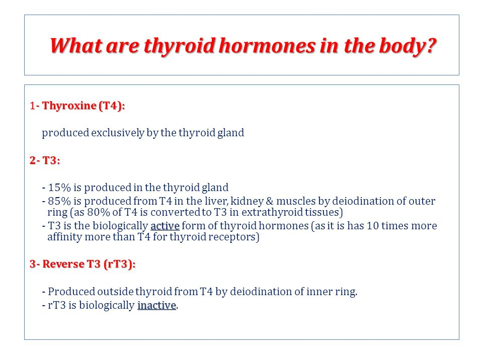 Thyroid Hormones ENDO ppt video online download