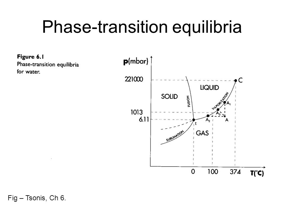 Phase-transition equilibria