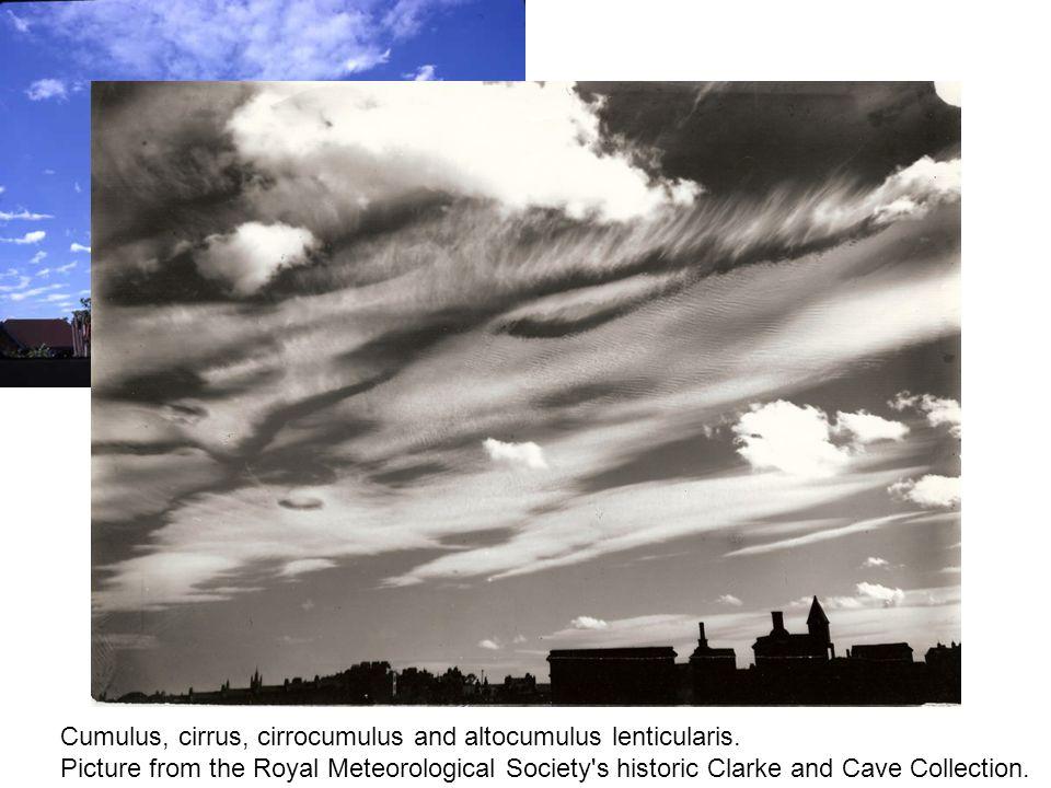Cumulus, cirrus, cirrocumulus and altocumulus lenticularis.