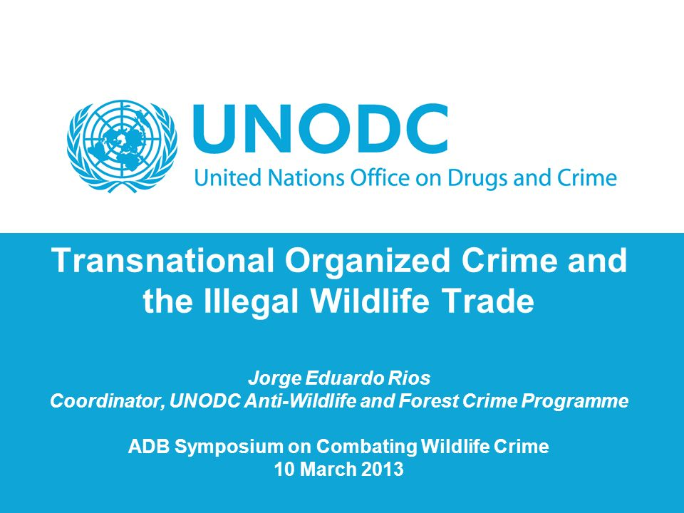 organized crime and drug trade
