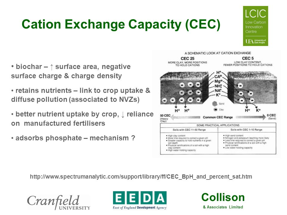 Cation Exchange Capacity (CEC)