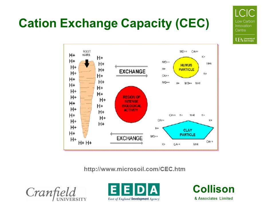 Cation Exchange Capacity (CEC)