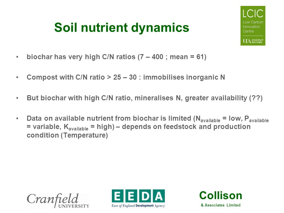 Soil nutrient dynamics