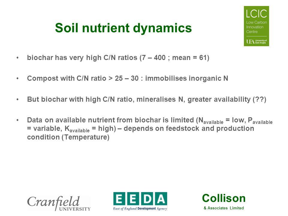 Soil nutrient dynamics