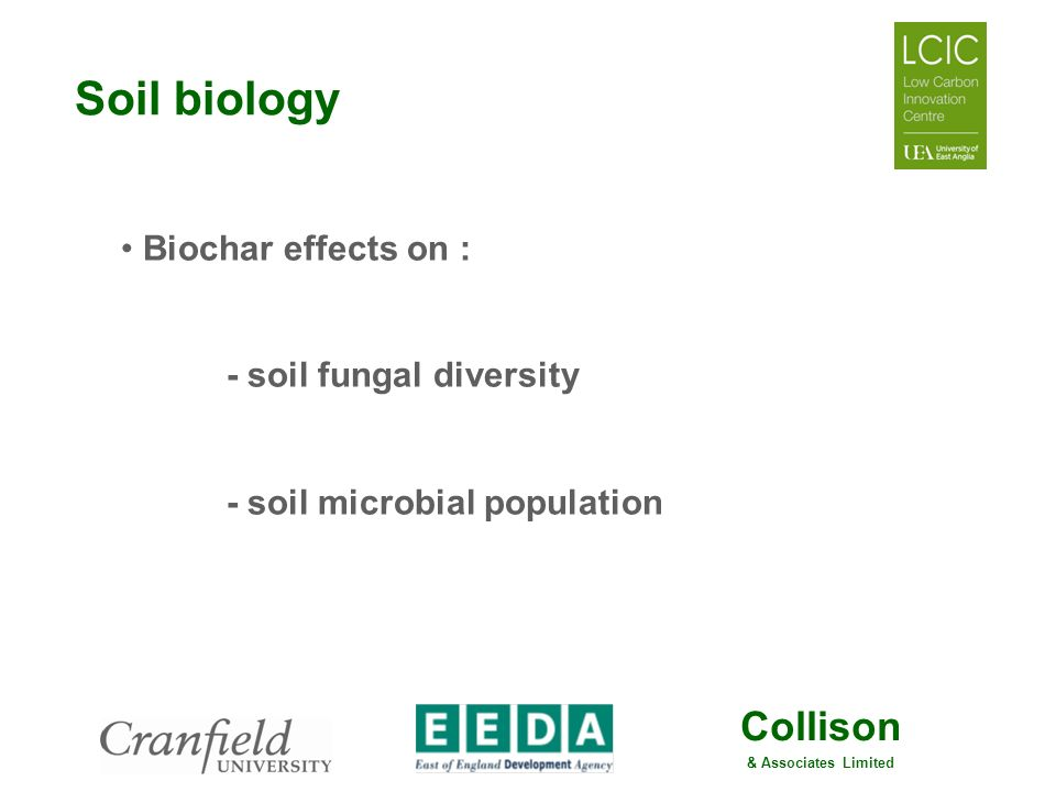 Soil biology Biochar effects on : - soil fungal diversity