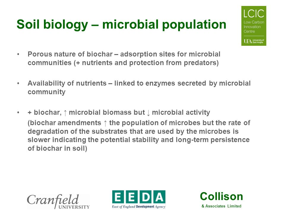 Soil biology – microbial population