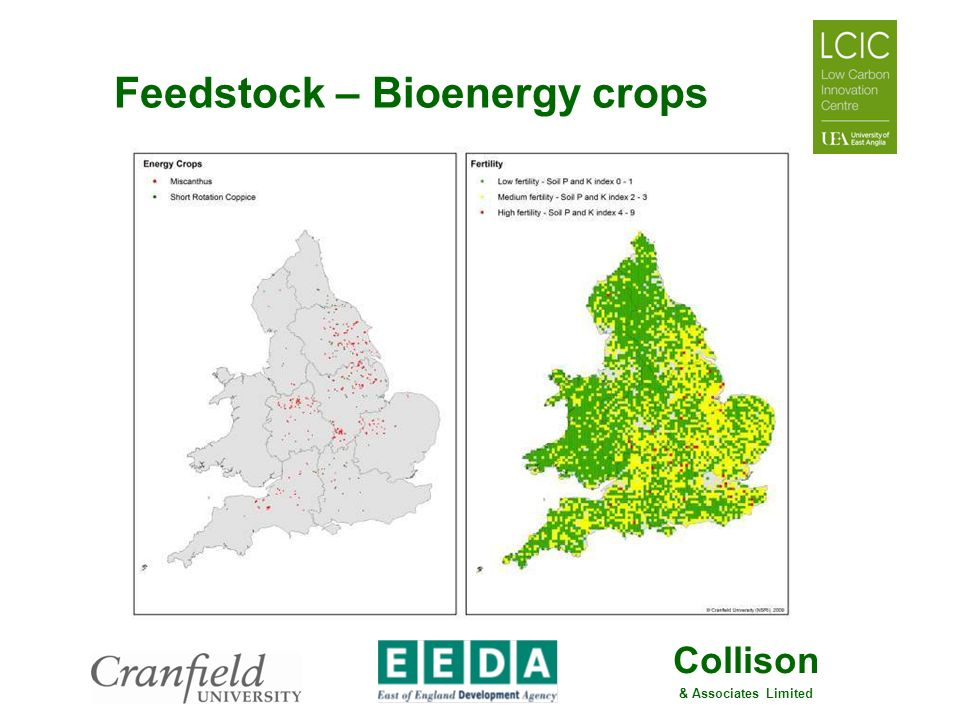 Feedstock – Bioenergy crops