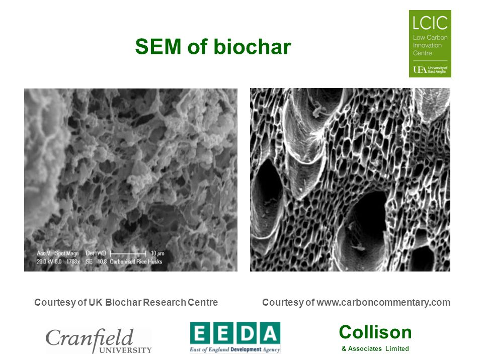 SEM of biochar Courtesy of UK Biochar Research Centre
