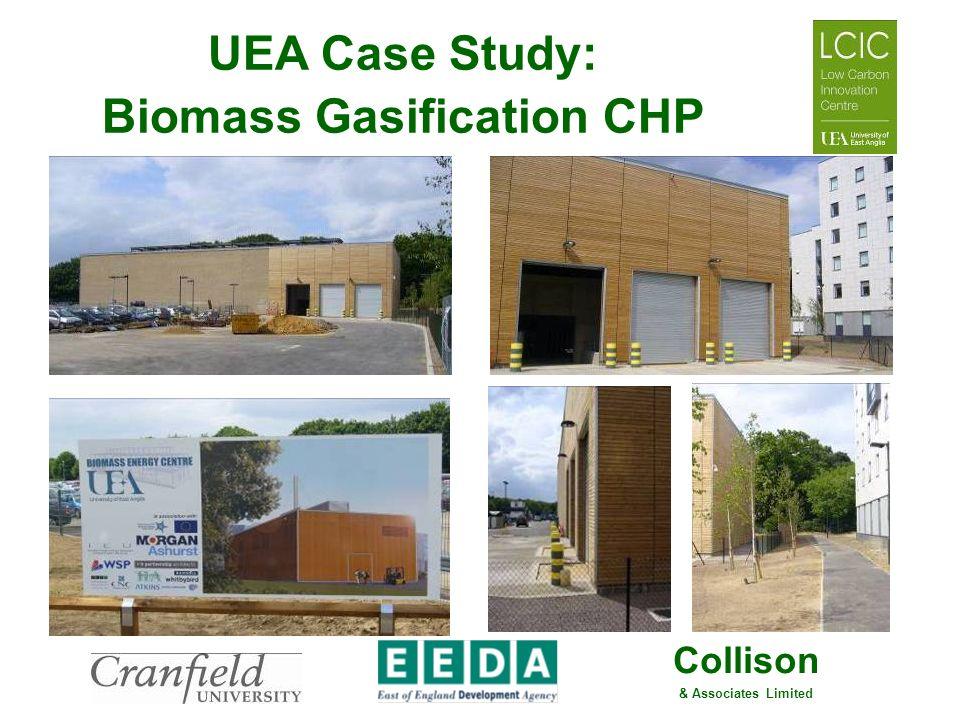 UEA Case Study: Biomass Gasification CHP