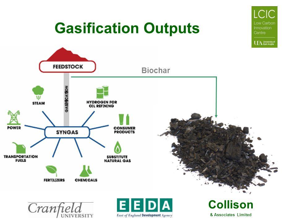 Gasification Outputs Biochar