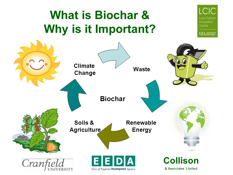 What is Biochar & Why is it Important