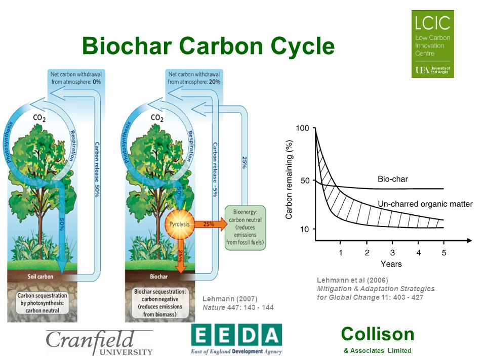 Biochar Carbon Cycle Lehmann (2007) Nature 447: 143 - 144.