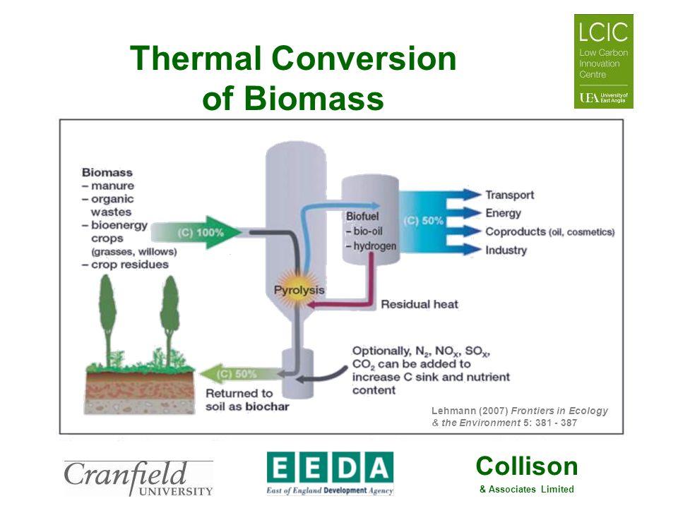 Thermal Conversion of Biomass