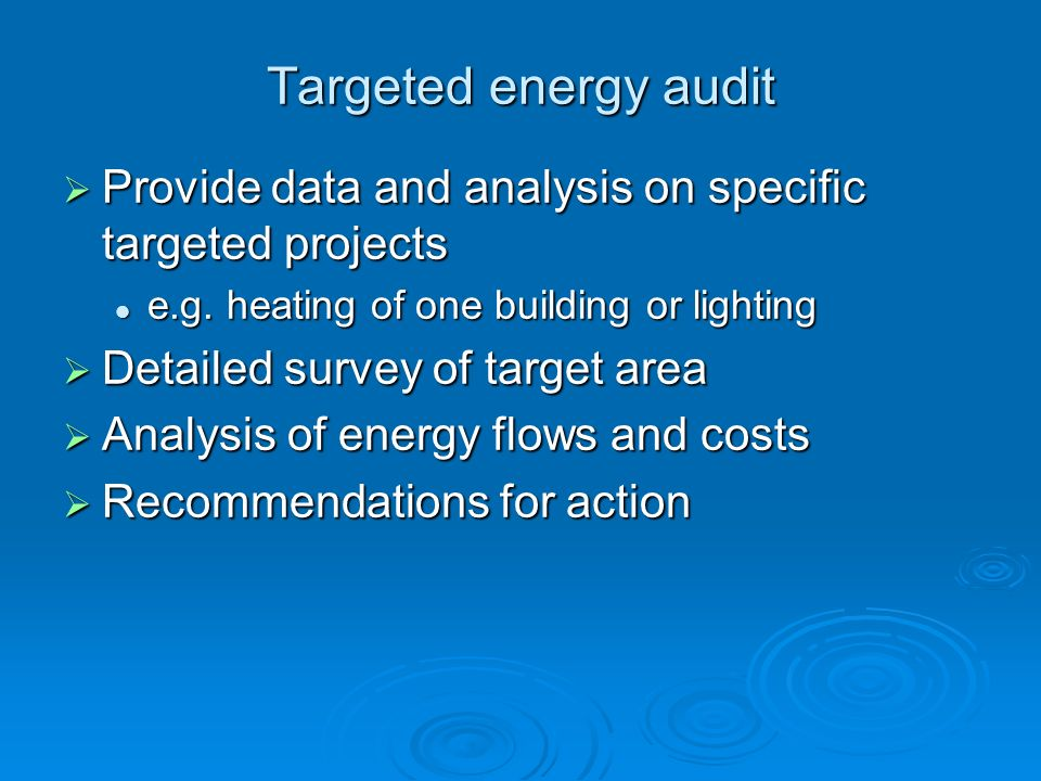 Targeted energy audit Provide data and analysis on specific targeted projects. e.g. heating of one building or lighting.