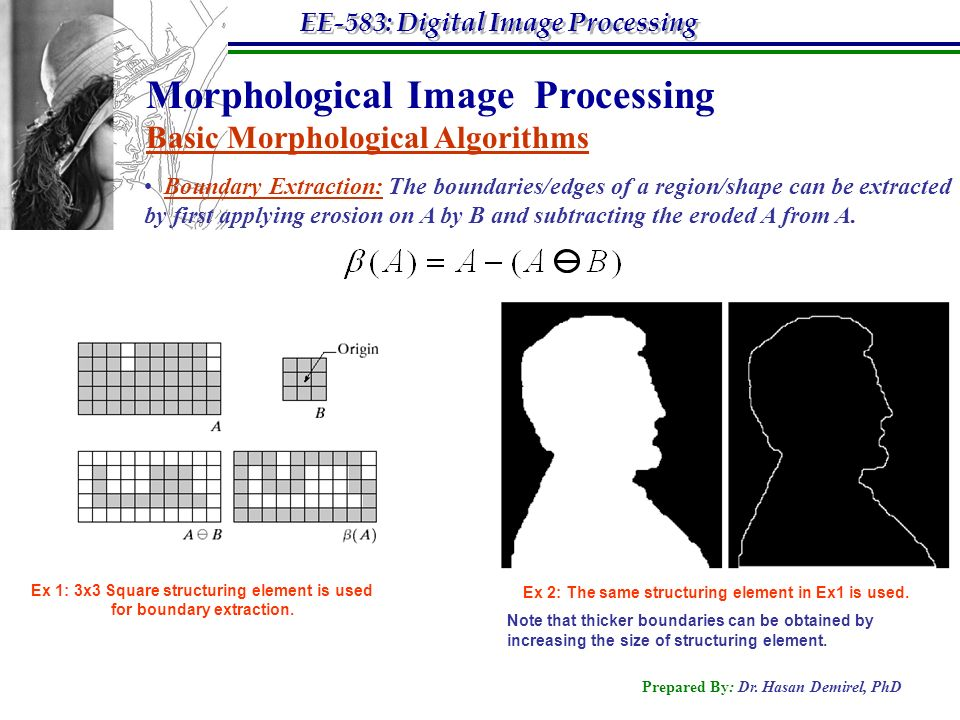 morphological image processing Morphological image processing introduction • in many areas of knowledge morphology deals with form and structure (biology, linguistics, social studies, etc).