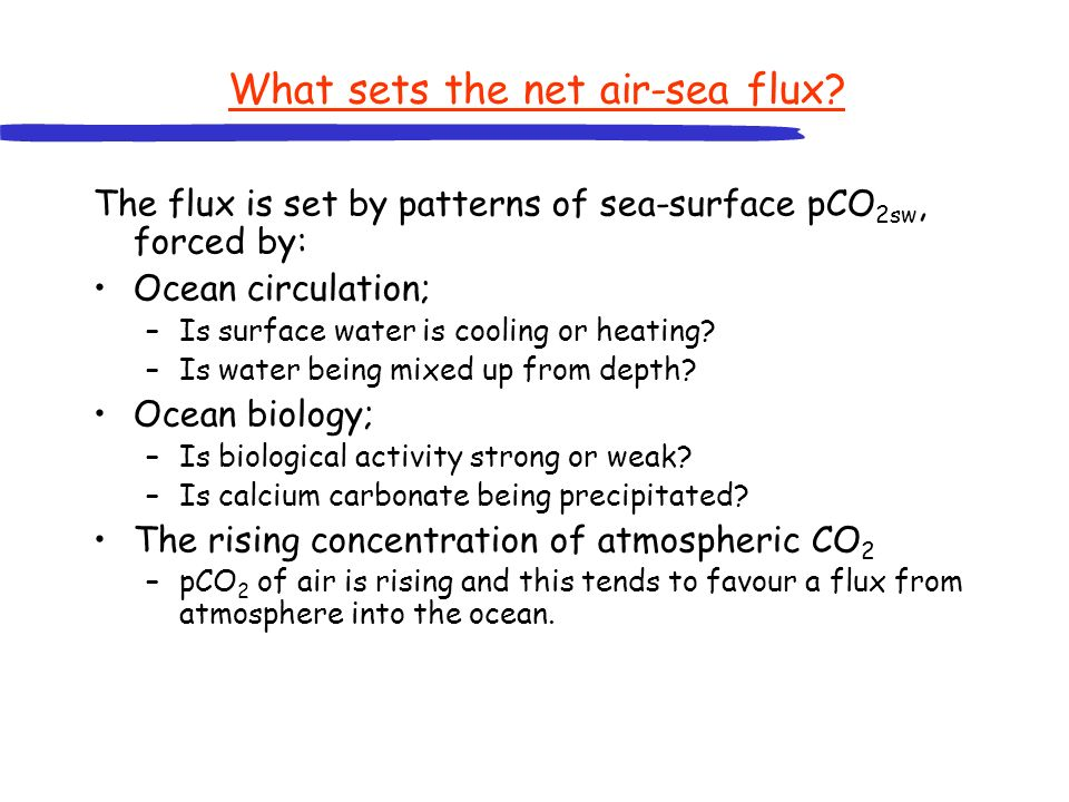 What sets the net air-sea flux