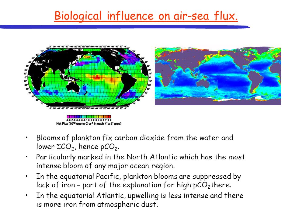 Biological influence on air-sea flux.