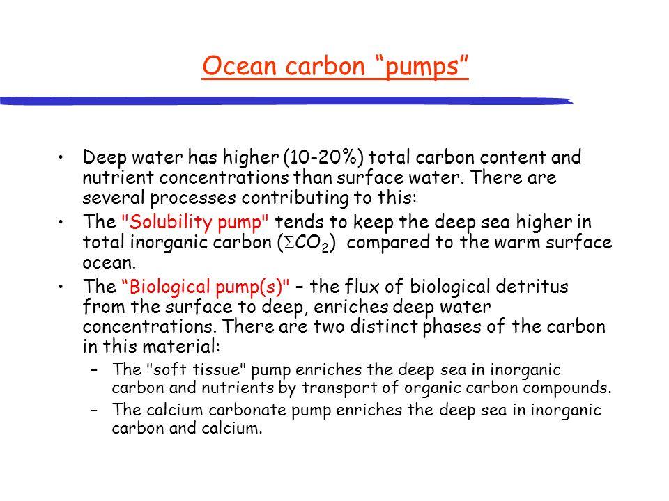Ocean carbon pumps