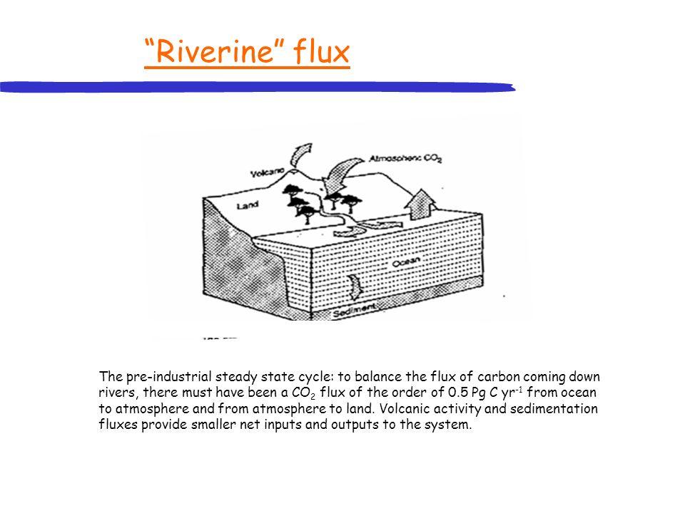 Riverine flux