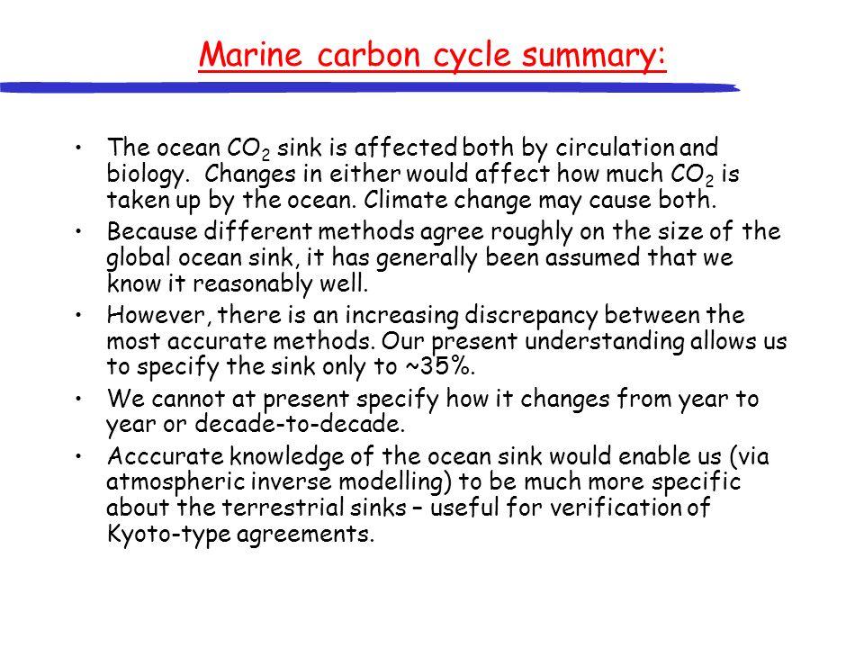 Marine carbon cycle summary: