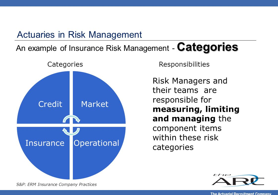 An example of Insurance Risk Management - Categories