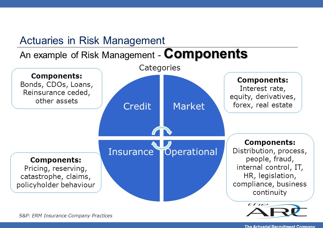 An example of Risk Management - Components