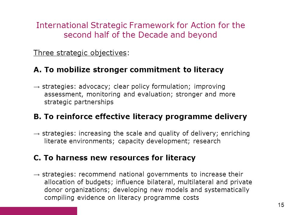 International Strategic Framework for Action for the second half of the Decade and beyond