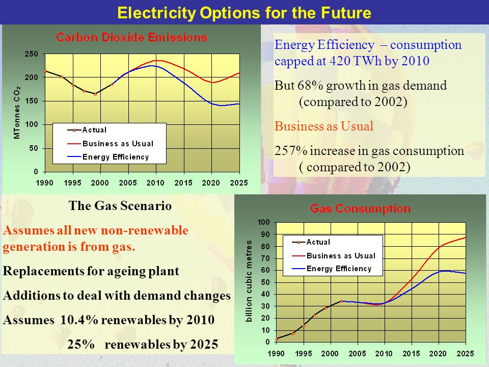 Electricity Options for the Future