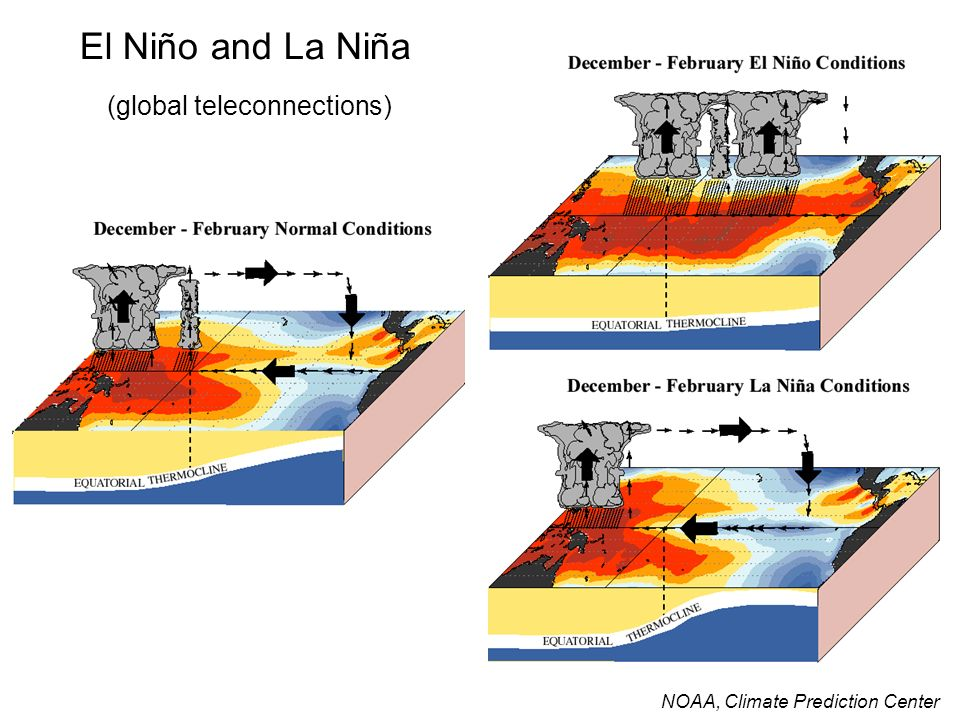 El Niño and La Niña (global teleconnections)