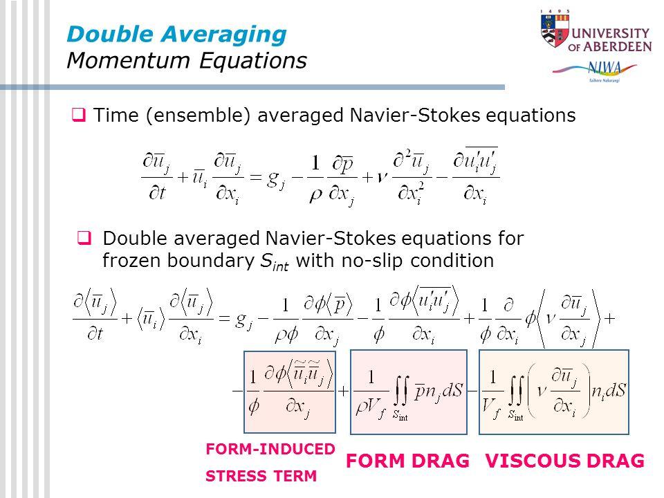 Double Averaging Momentum Equations