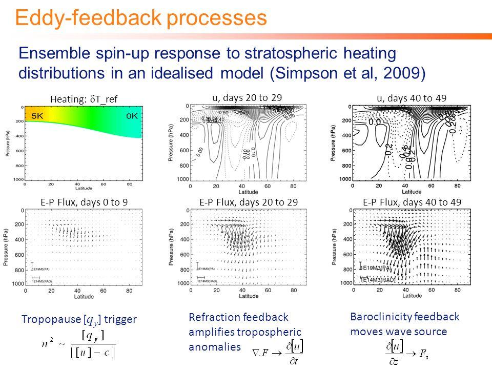 Eddy-feedback processes