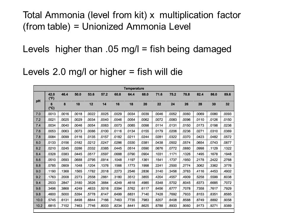 Total Ammonia (level from kit) x multiplication factor (from table) = Unionized Ammonia Level