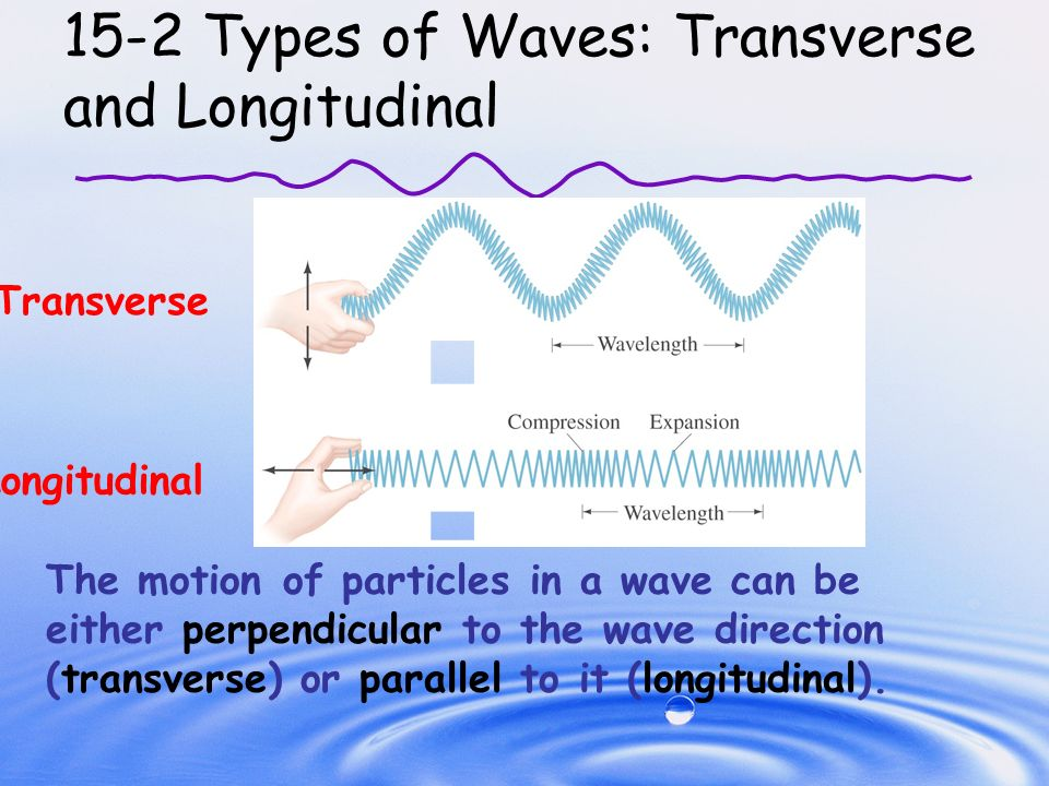 longitudinal and transverse waves Transverse wave transverse wave is formed when vibration of particles of the medium conveying a wave that is perpendicular to the direction of the propagation of the wave.