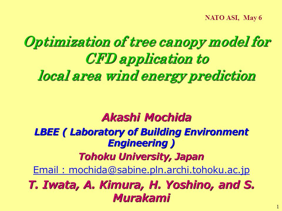 NATO ASI, May 6 Optimization of tree canopy model for CFD application to local area wind energy prediction.