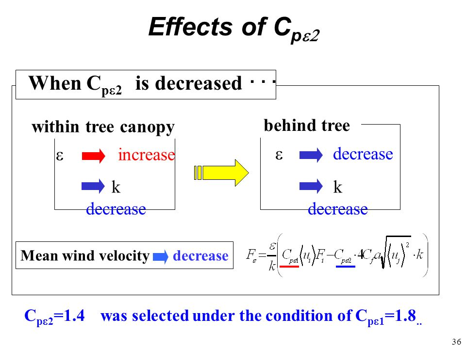 Effects of Cpe2 When Cpe2 is decreased ・・・ within tree canopy