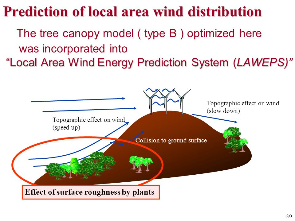 Prediction of local area wind distribution The tree canopy model ( type B ) optimized here was incorporated into Local Area Wind Energy Prediction System (LAWEPS)
