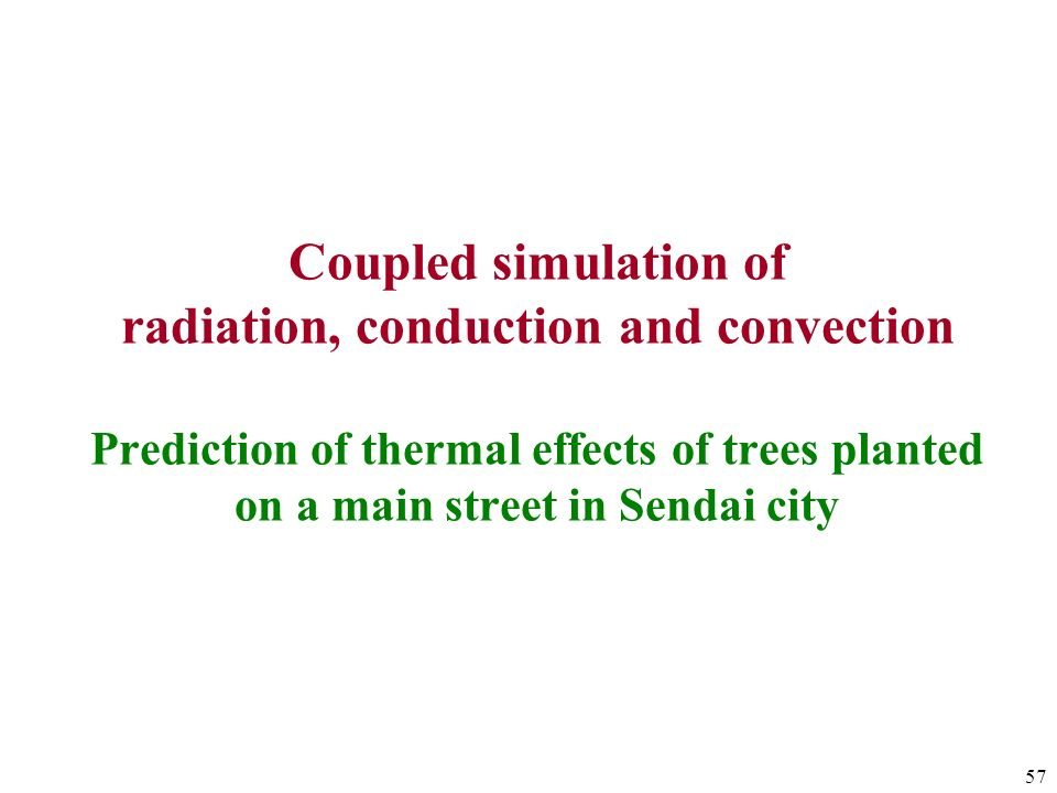 Coupled simulation of radiation, conduction and convection Prediction of thermal effects of trees planted on a main street in Sendai city
