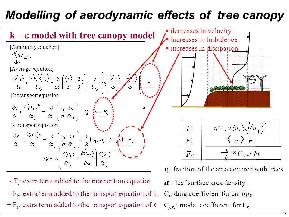 Modelling of aerodynamic effects of tree canopy