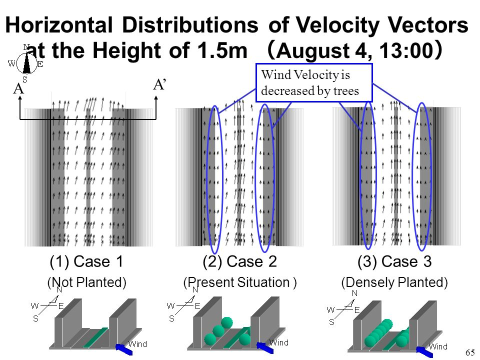 Horizontal Distributions of Velocity Vectors